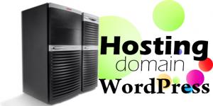 Hướng dẫn trỏ domain về hosting và cài đặt WordPress