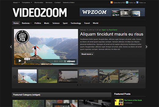 wpzoom-videozoom
